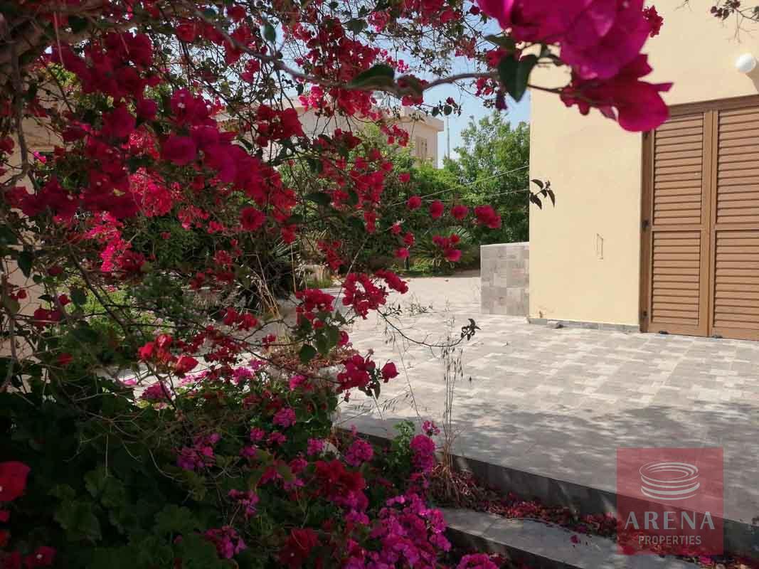 2 bed villa in ayia thekla - garden