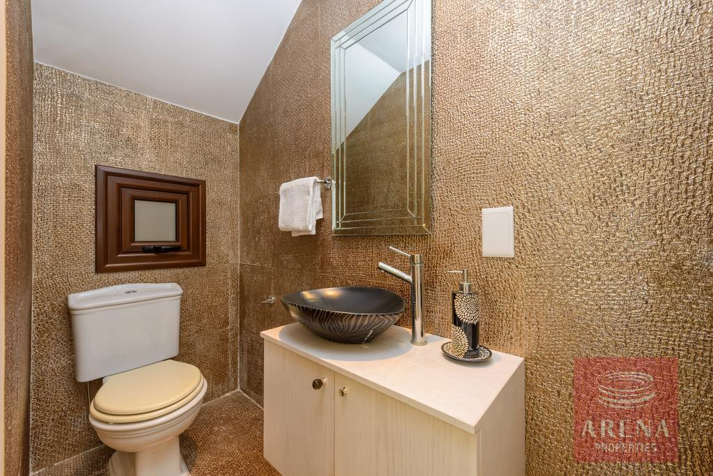 seafront villa in ayia thekla - guest WC