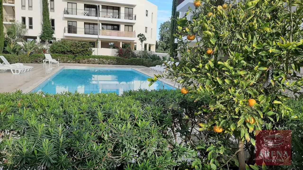 2 bed apt for rent in mazotos