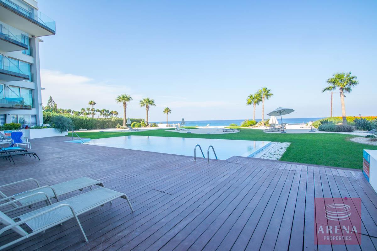 beachfront apartment in Protaras - pool