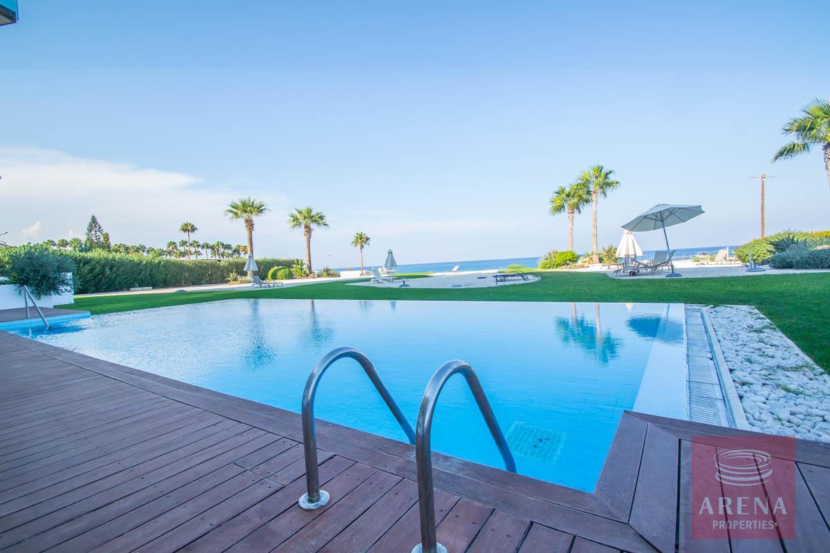 beachfront apartment in Protaras - swimming pool