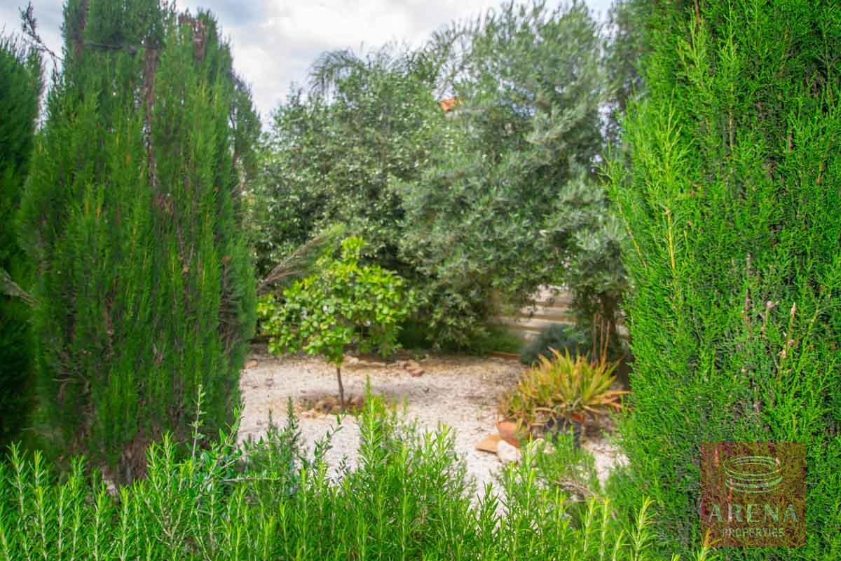 3 Bed Villa in Pernera to buy - communal garden