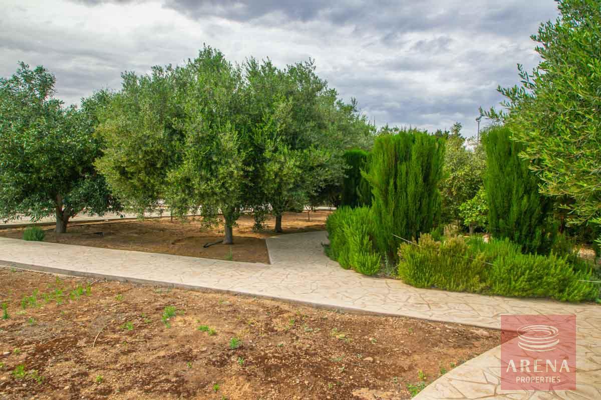 3 Bed Villa in Pernera for sale - communal garden