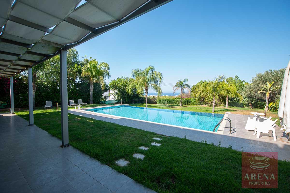 buy villa in Protaras - swimming pool