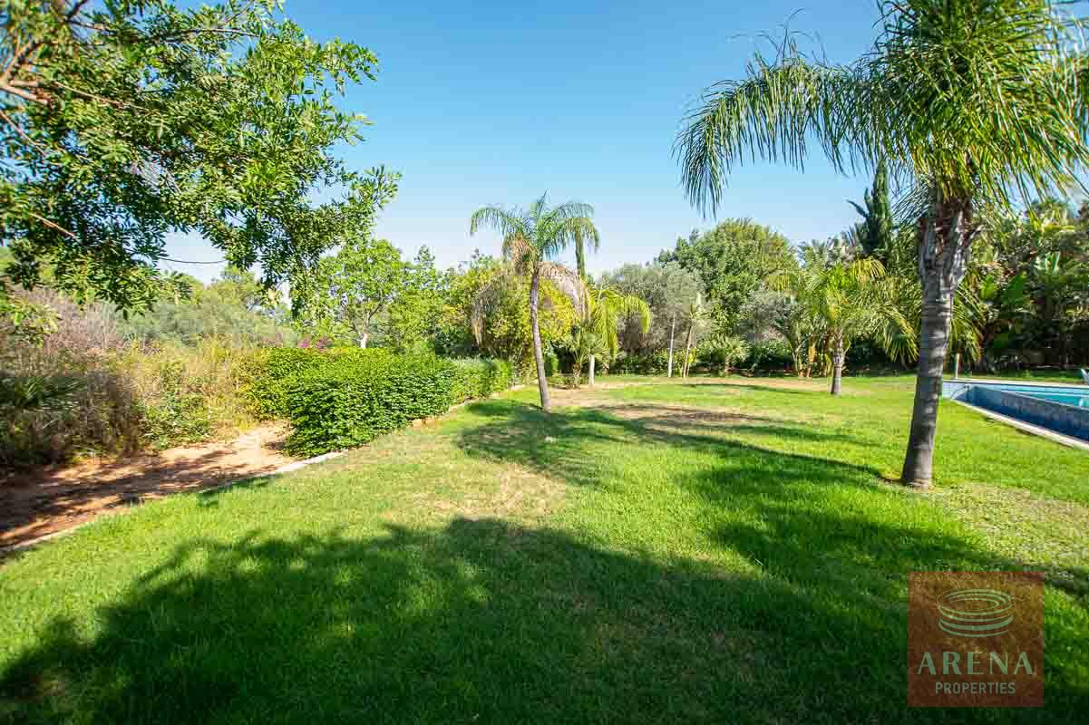 8 Bed Villa in Protaras - garden