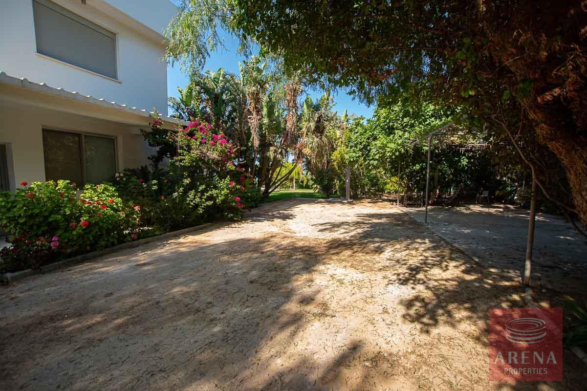 8 Bed Villa in Protaras - outside area