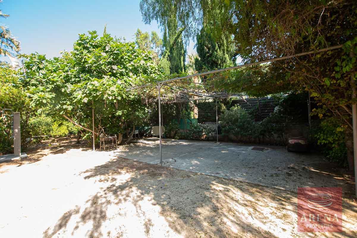 8 Bed Villa in Protaras - back yard