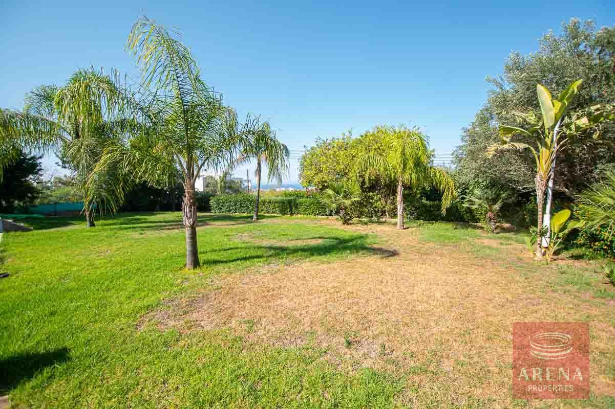 8 Bed Villa in Protaras to buy - garden