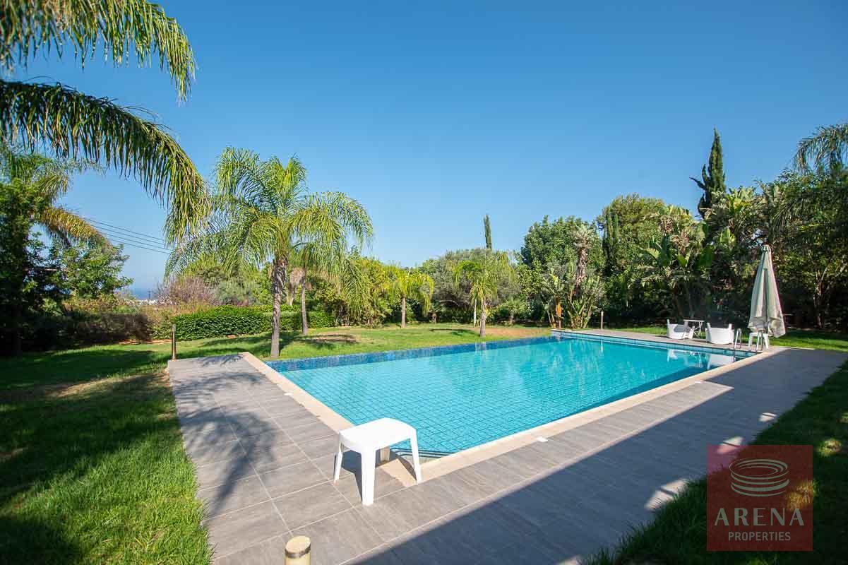Villa in Protaras for sale - swimming pool