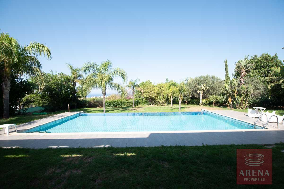 buy villa in Protaras