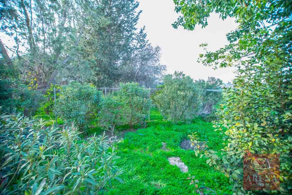 Detached House in Ahna - garden
