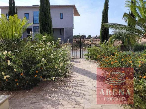 17-5-Bed-villa-in-Paralimni-5841